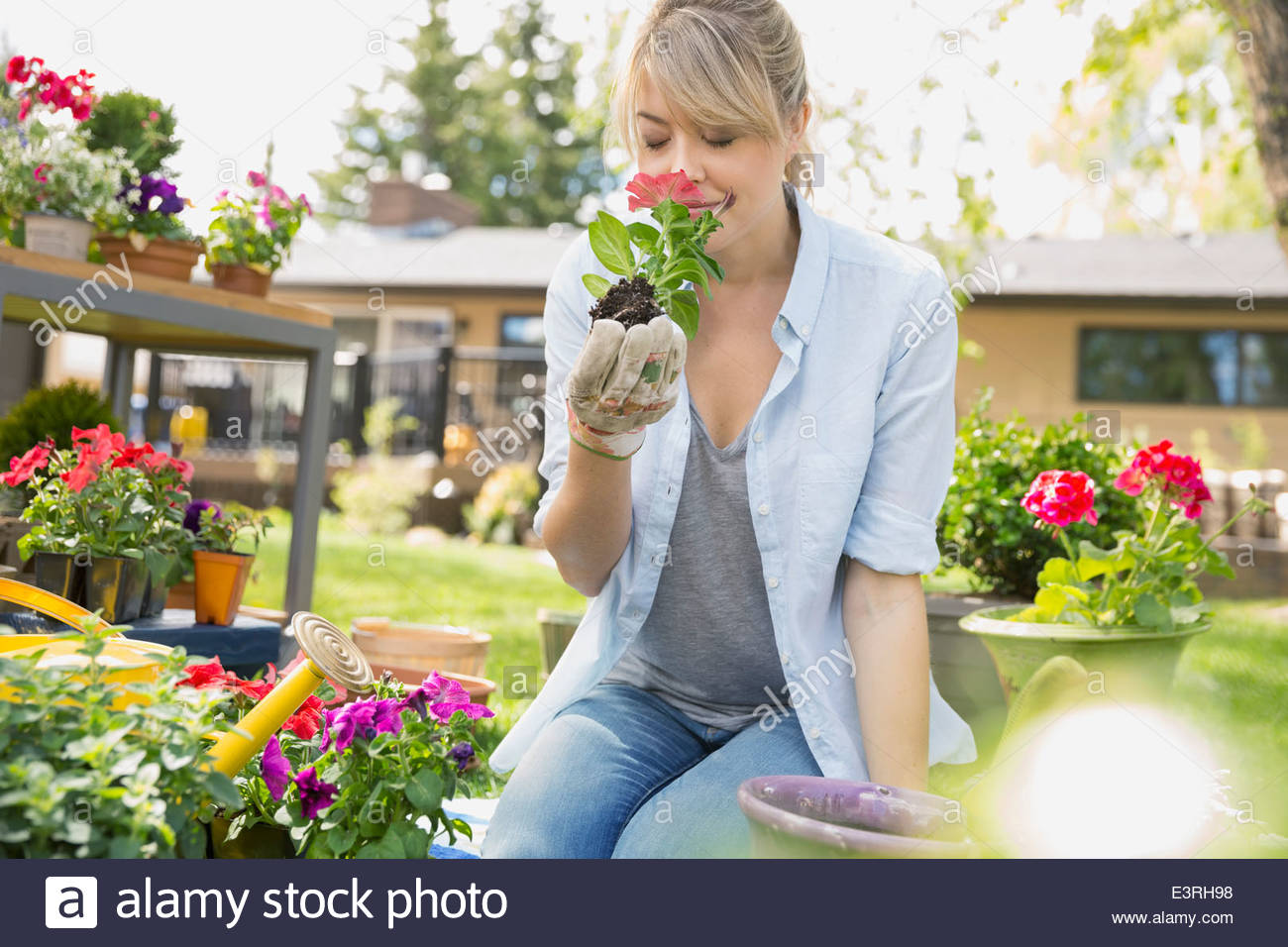 Woman smelling flower in garden - Stock Image
