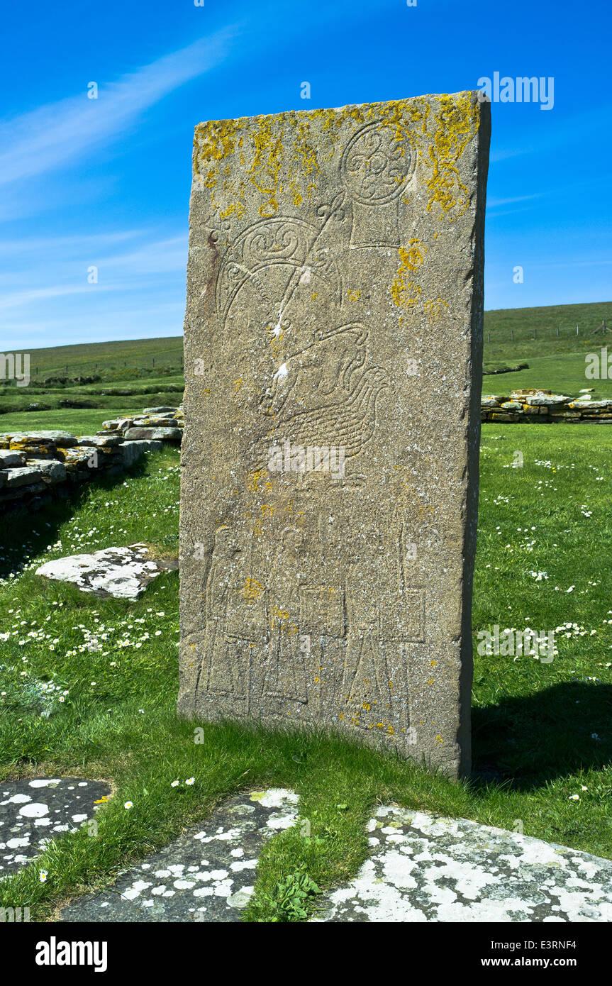 dh Brough of Birsay BIRSAY ORKNEY Pictish art carving Birsay symbol stone replica stones standing scotland pict Stock Photo