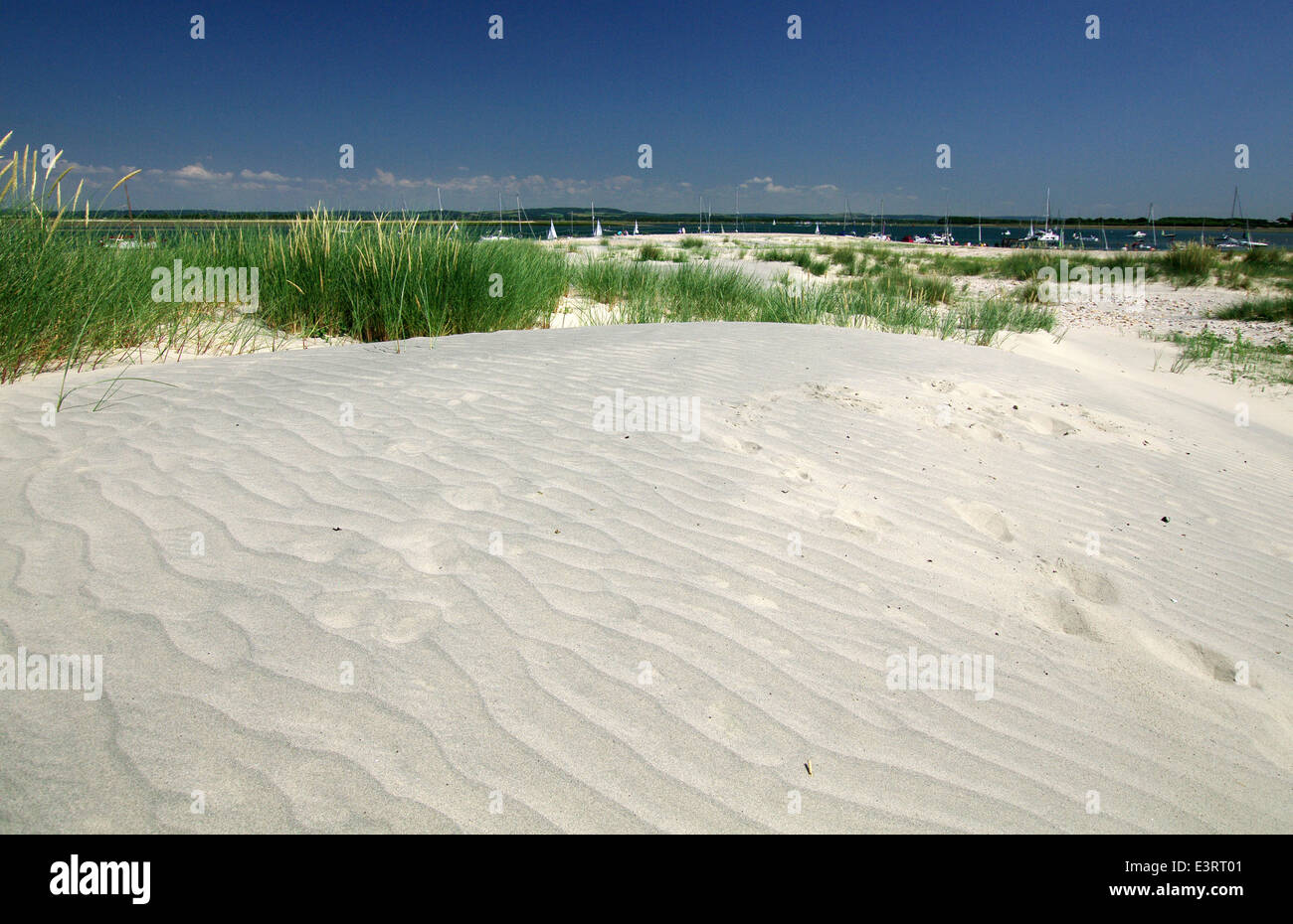 Sand dunes at East Head - West Wittering, Sussex - Stock Image