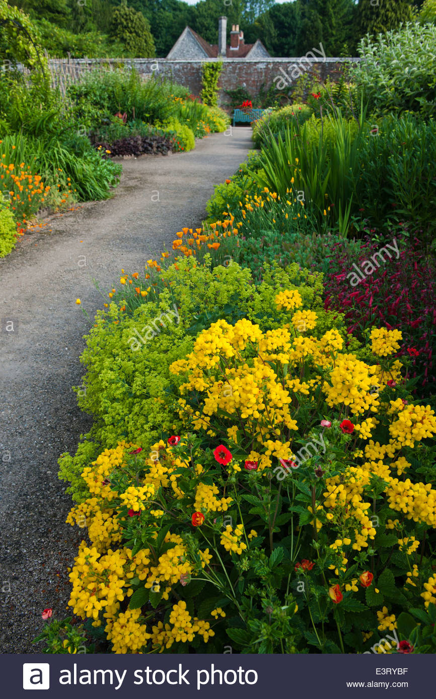 hot warm colour color borders view mixed summer border West Dean Sussex walled garden June path formal focal point - Stock Image