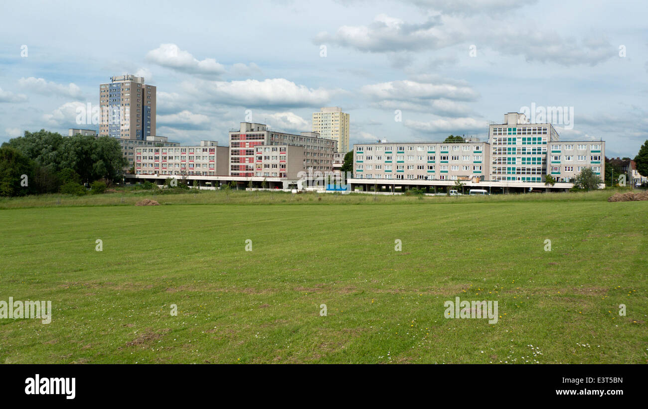 View of Broadwater Farm Estate Tottenham social housing from Lordship Recreation Ground park North London UK KATHY - Stock Image