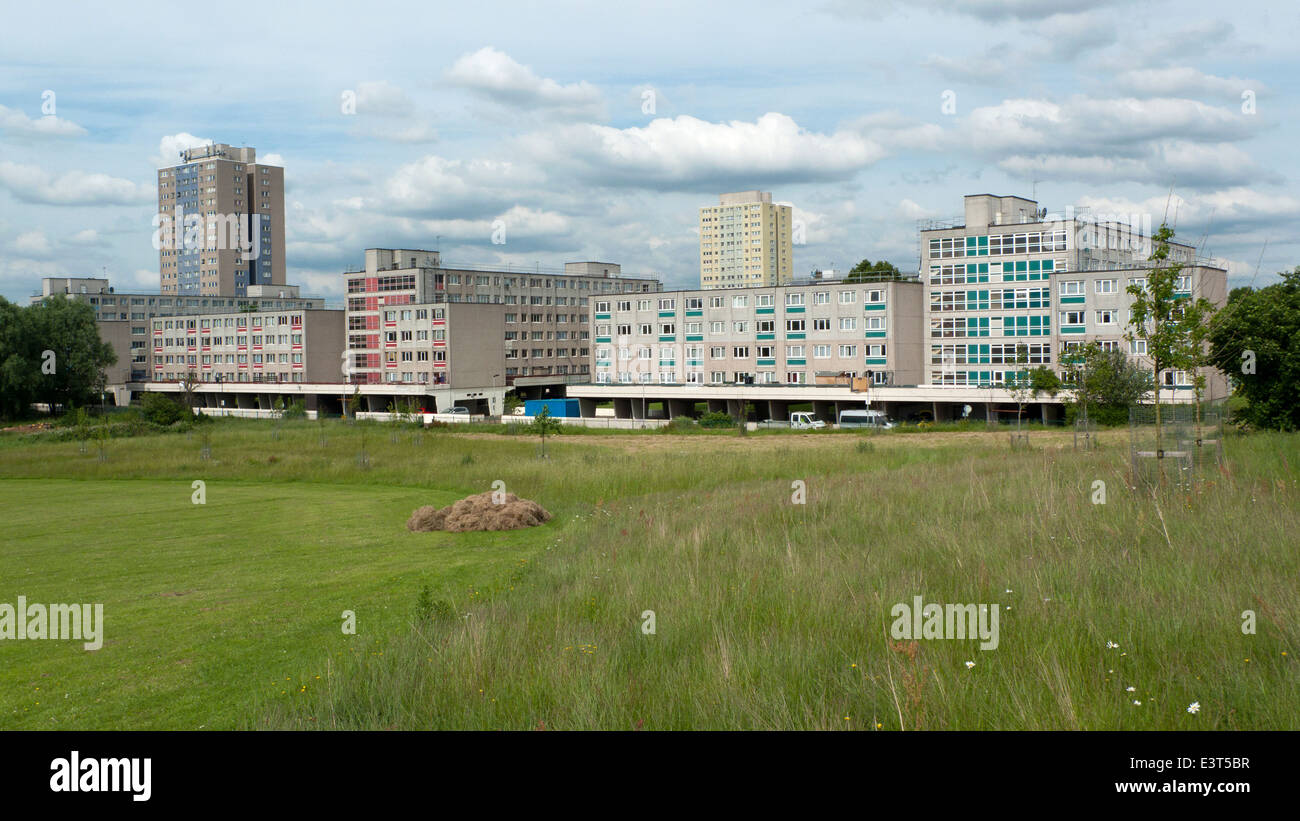 Broadwater Farm Estate Tottenham social housing and a high rise tower block on skyline near Lordship Recreation - Stock Image