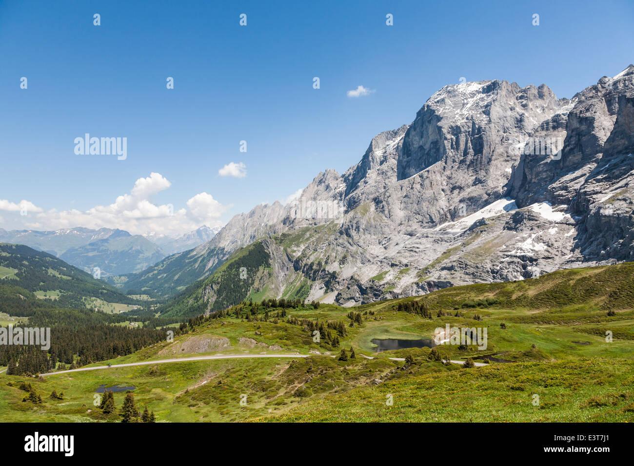 View near Grosse Scheidegg, above Grindelwald, over Schwarzwaldalp with Wetterhorn in foreground - Stock Image
