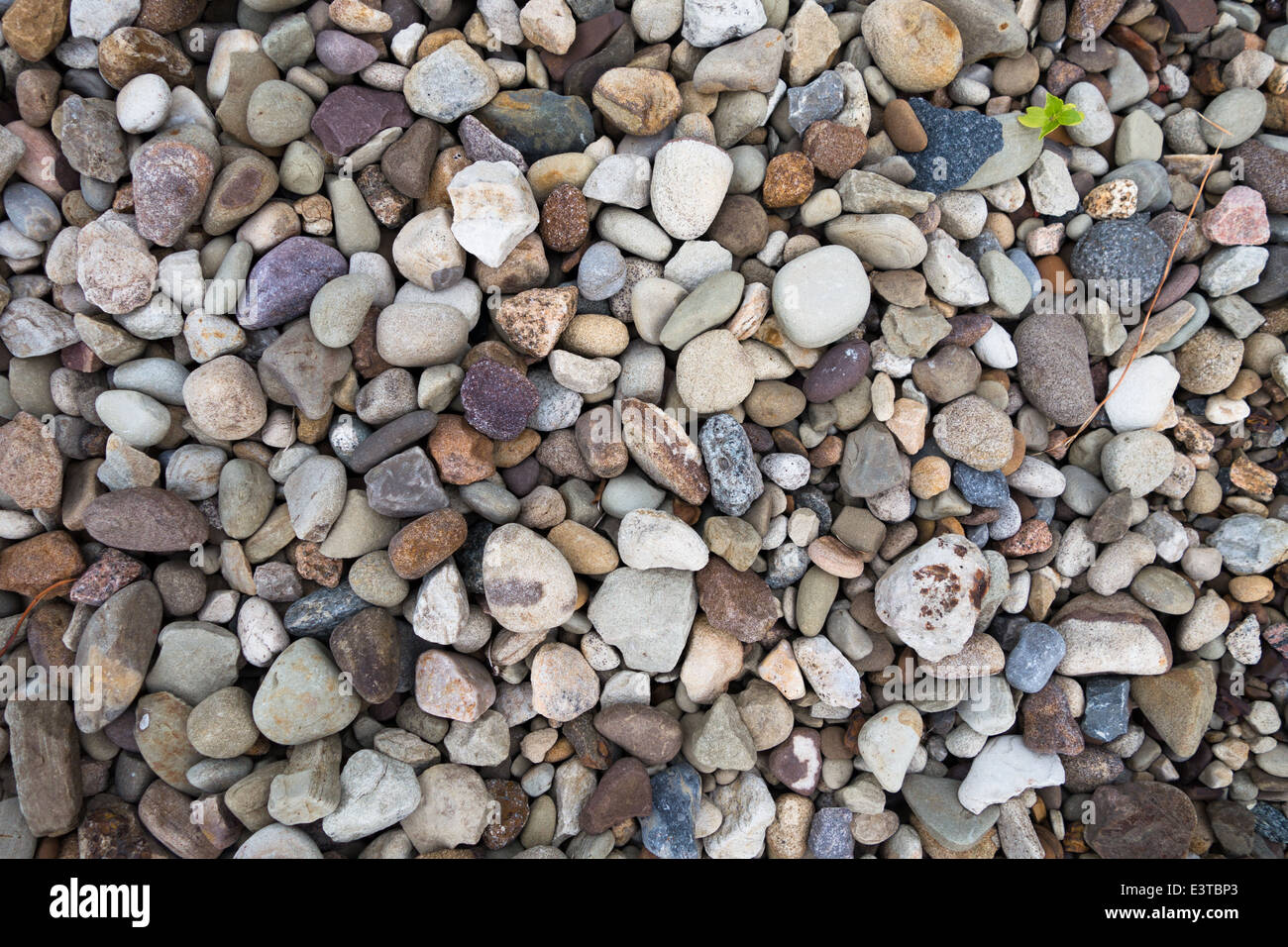Gravel and crushed stone: difference, photo