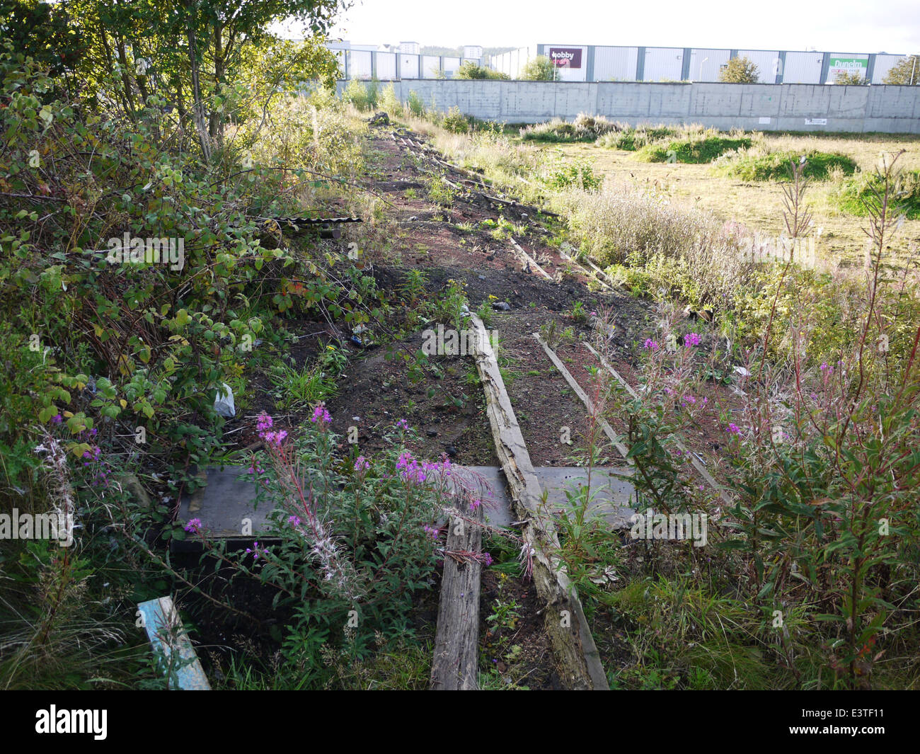 The Remains of the Terracing at Firs Park Football Ground. Former home of East Stirlingshire FC. - Stock Image