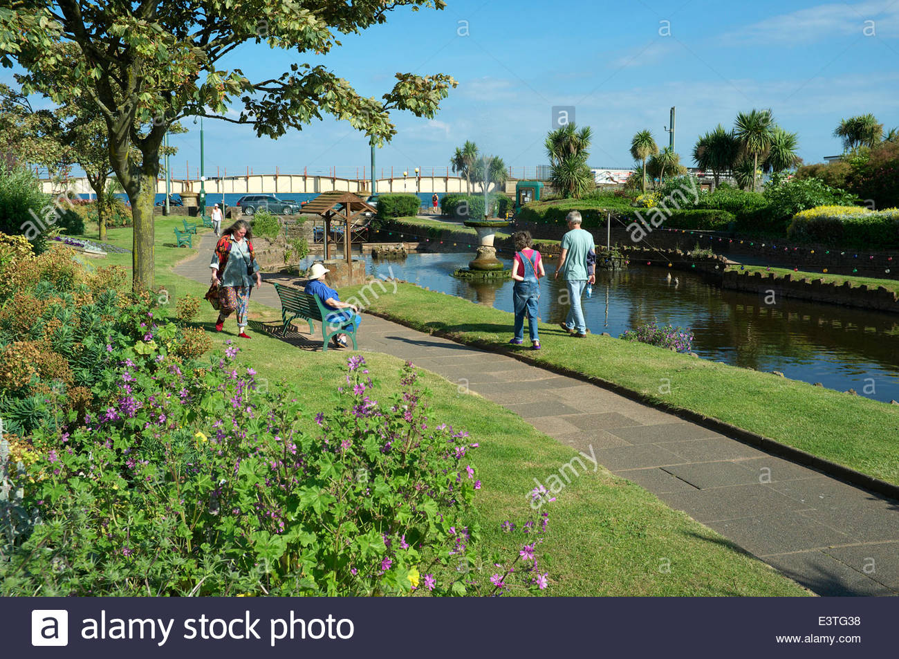 The Lawn, park gardens in the centre of Dawlish town, in south Devon, UK. - Stock Image