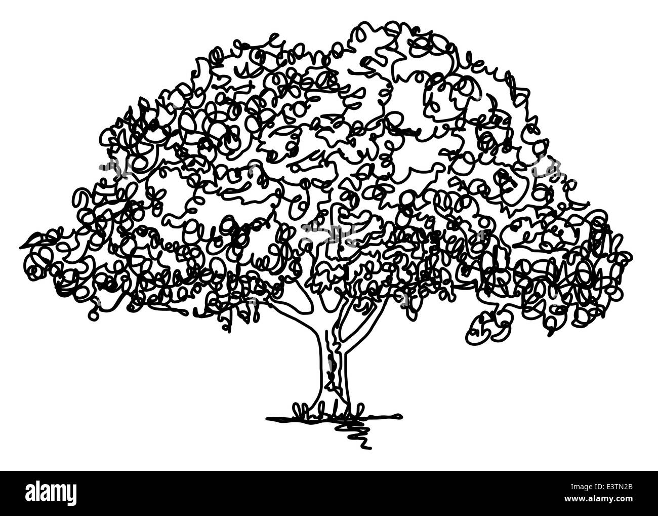 Continuous line drawing of an oak tree - Stock Image