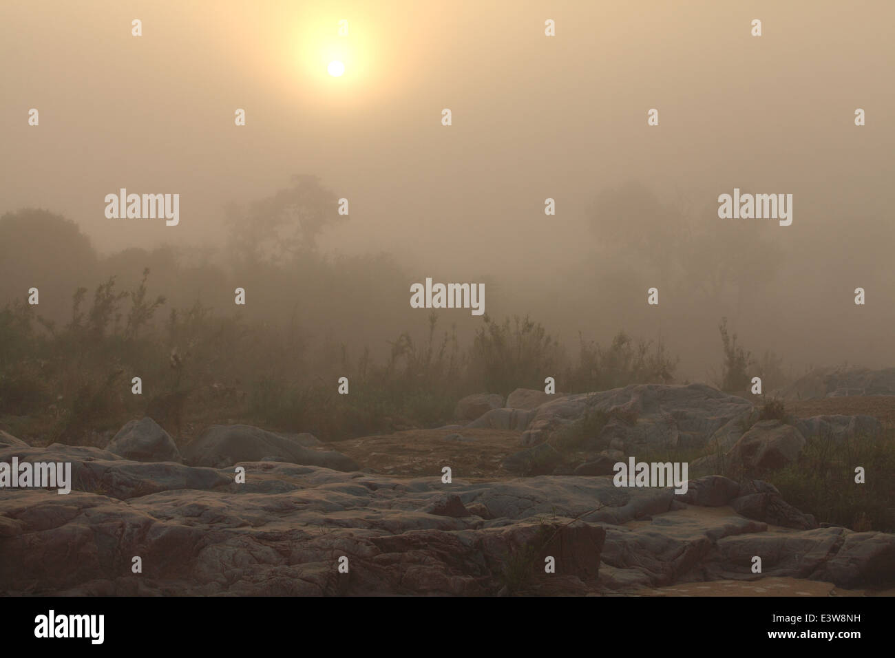A misty dawn over a river in the Kruger National Park. - Stock Image