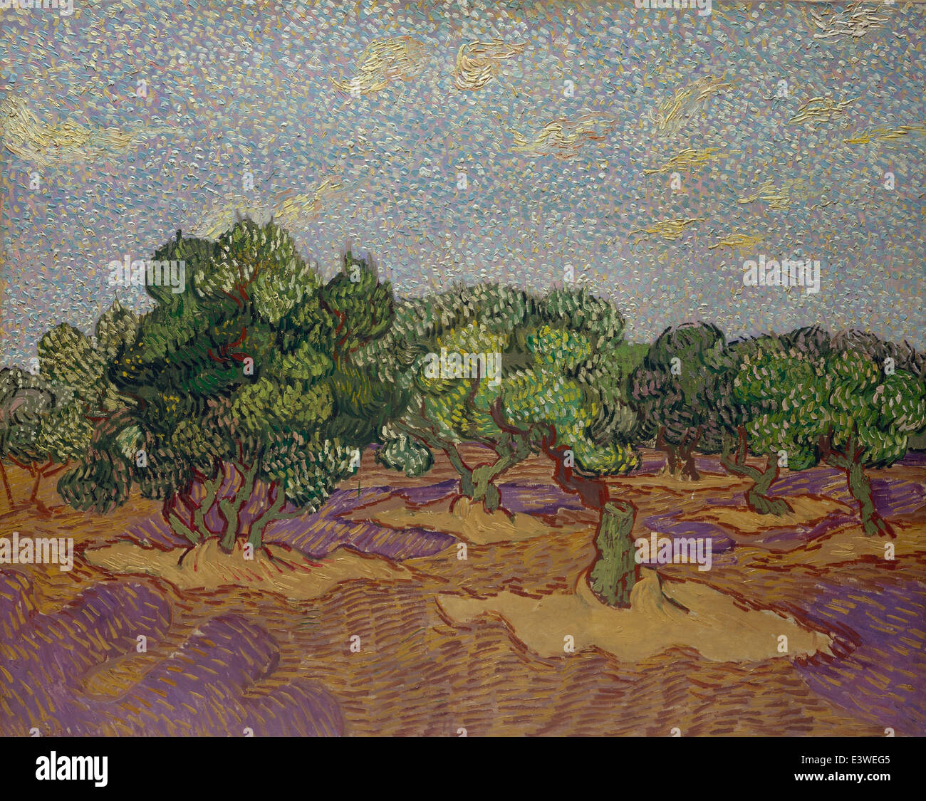 Vincent van Gogh - Olive Trees - 1889 - MET Museum - New-York - Stock Image