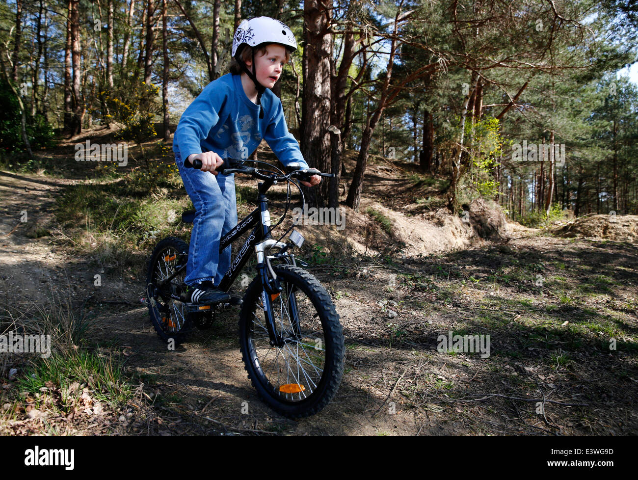 A young boy wearing a helmet rides his BMX bicycle in woodland in Hampshire, England Stock Photo