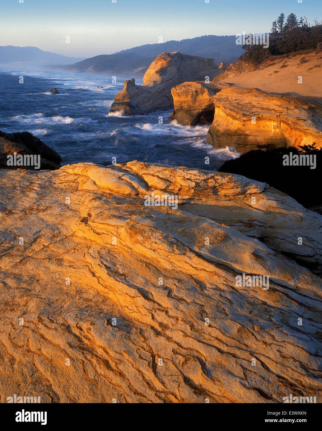 North America: natural areas. Natural areas of North America: table 5