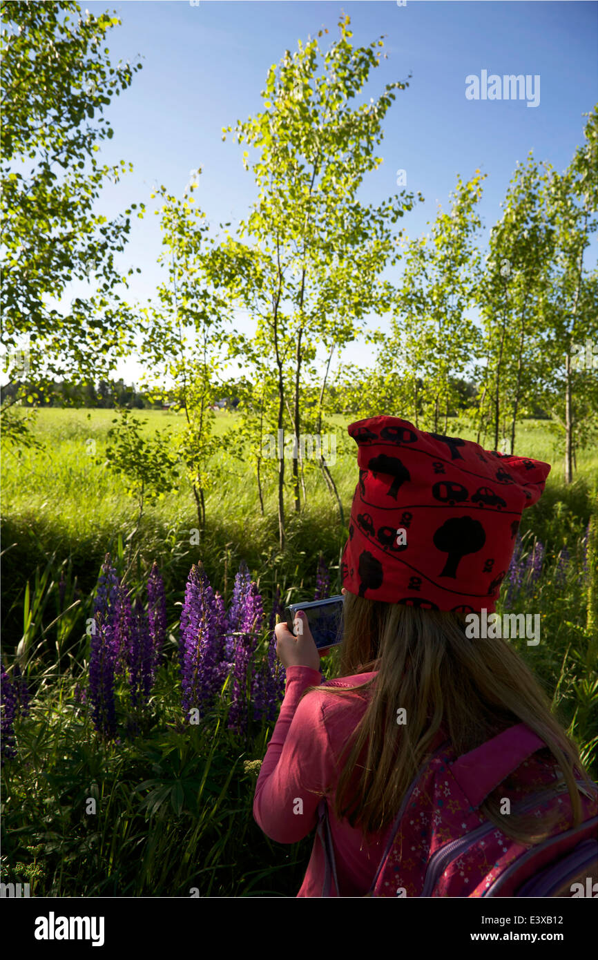 A girl photographing flowers in summer in Finland - Stock Image