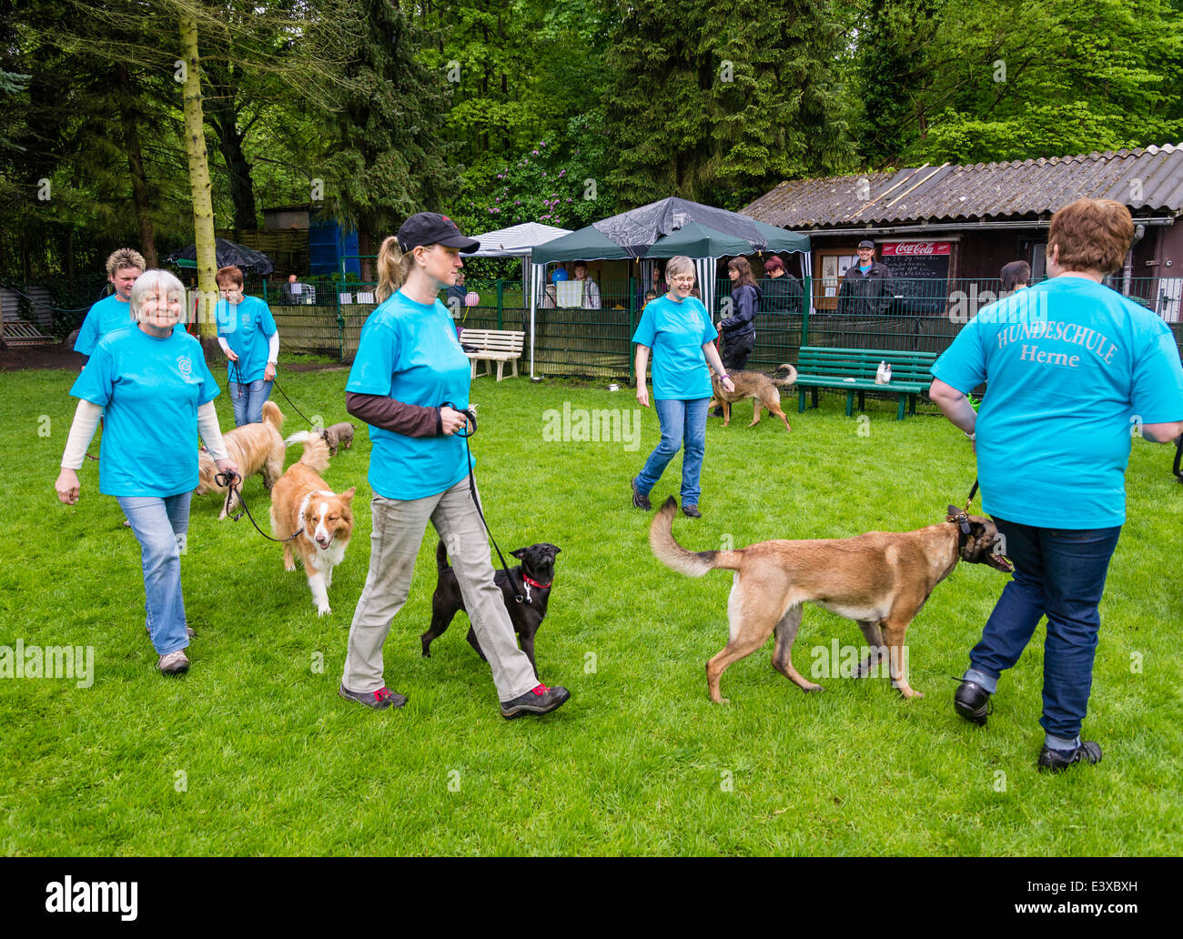 A dog trainer (in the center) advises dog owners how to handle their pets at a dog obedience school . - Stock Image