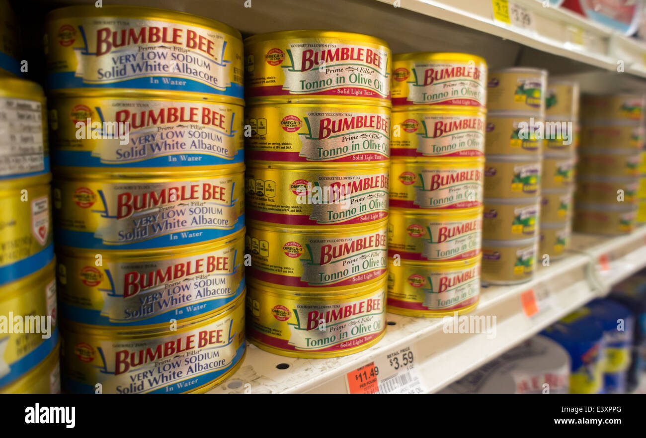 Cans of Bumble Bee solid white albacore tuna on a grocery store shelf in New York - Stock Image