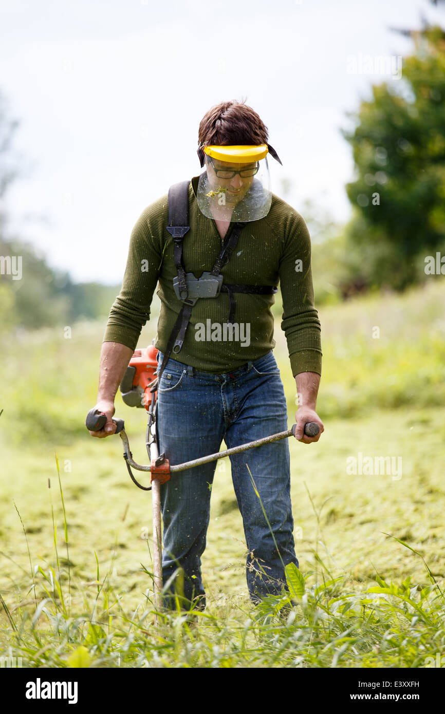 Man working with grass trimmer - Stock Image