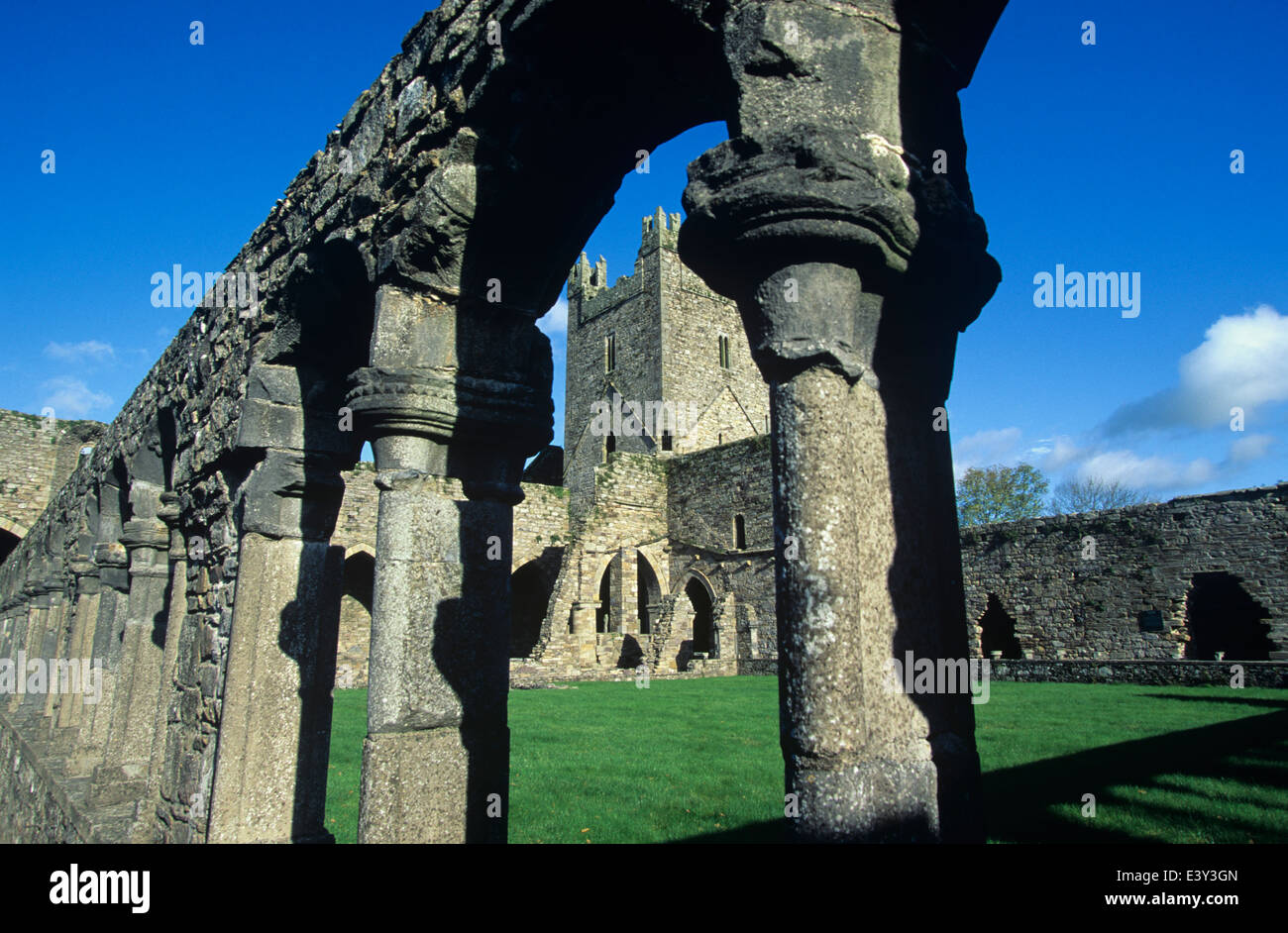 Jarpoint Abbey, circa 1135, is the most complete of the early medieval Abbeys, County Kilkenny, Ireland. - Stock Image