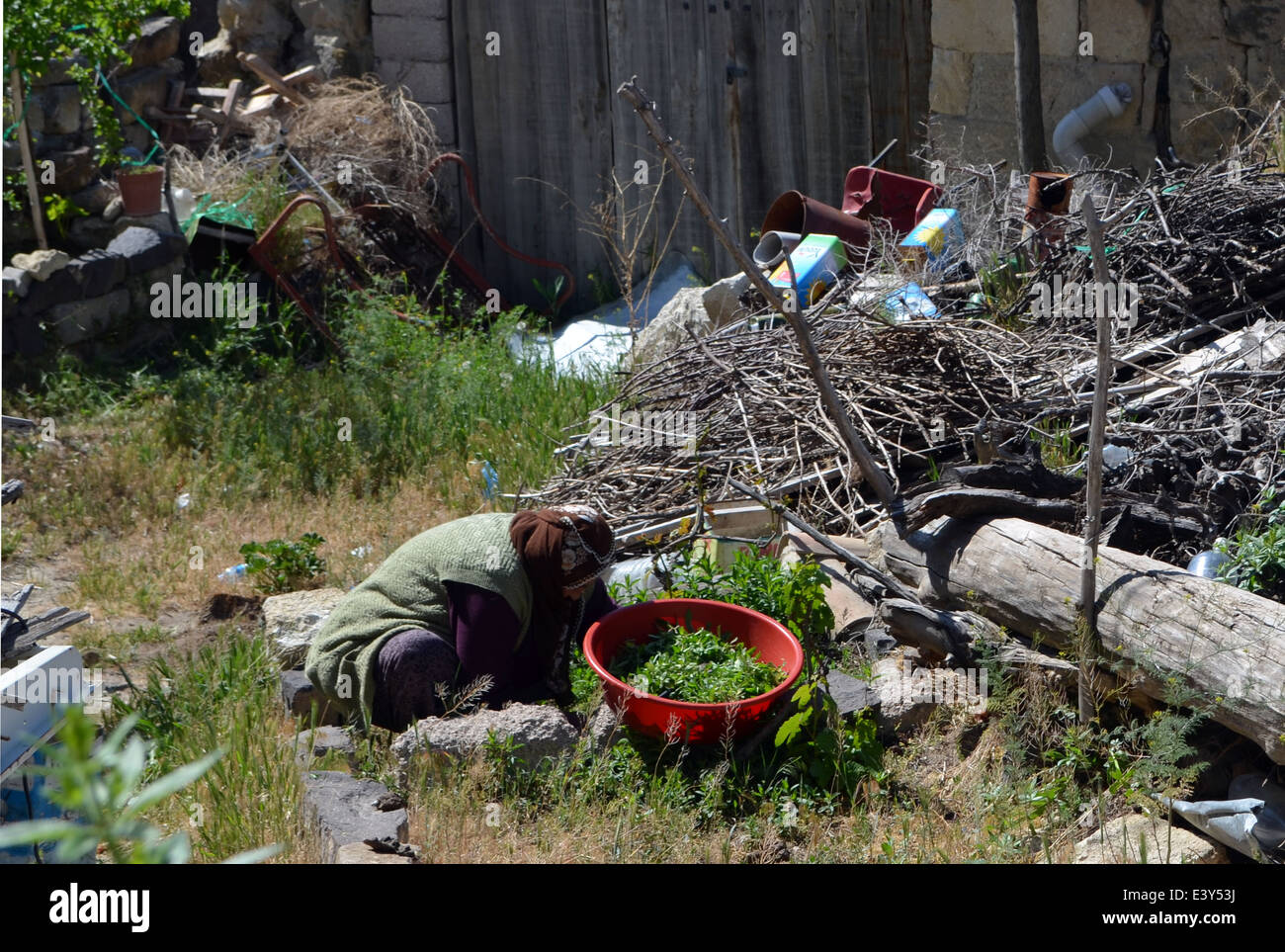 An elderly lady tends the produce of some run down housing in Capadoccia.Central Turkey. - Stock Image