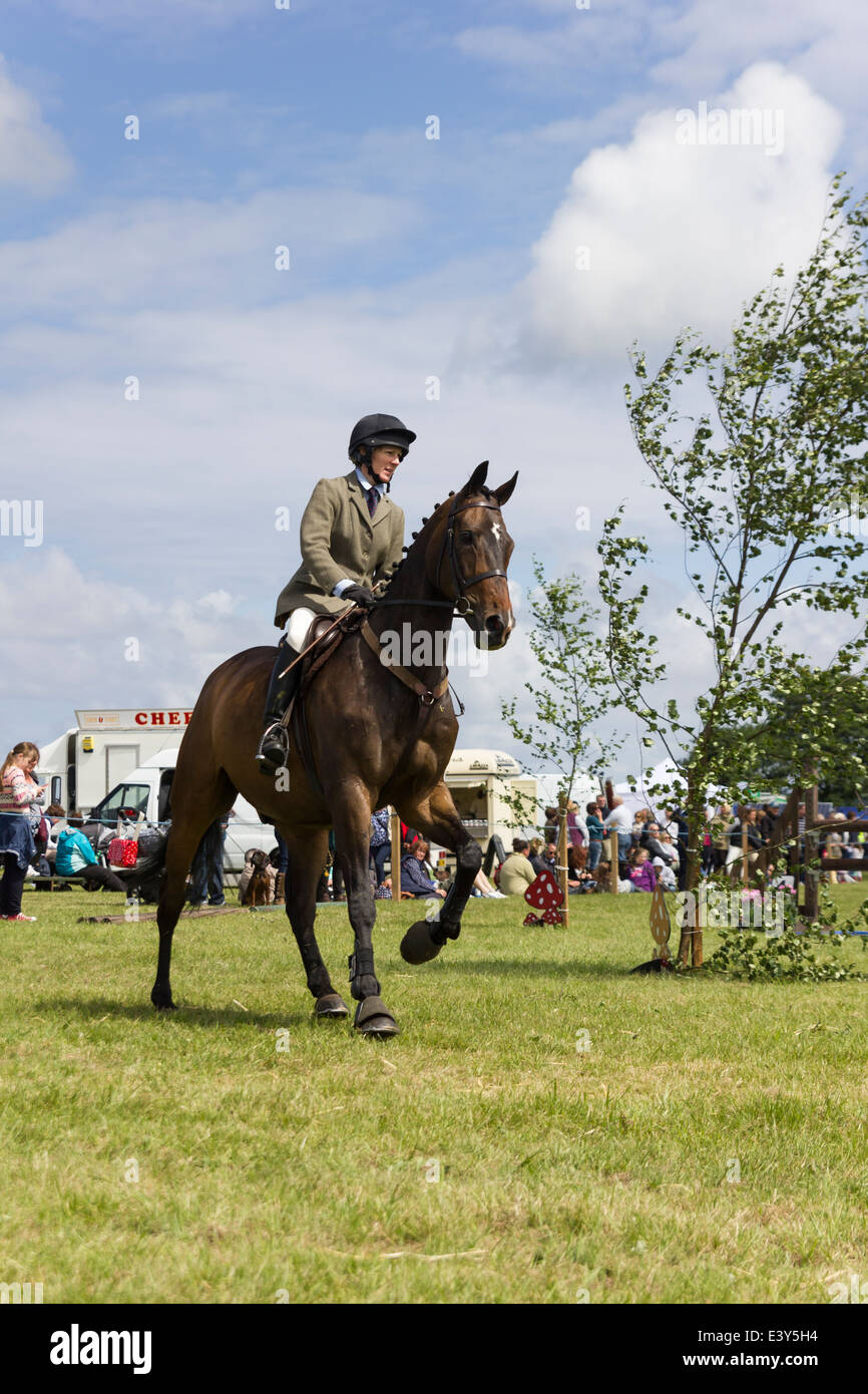 Show jumping at the 2014 Haddington Agricultural Show - Stock Image
