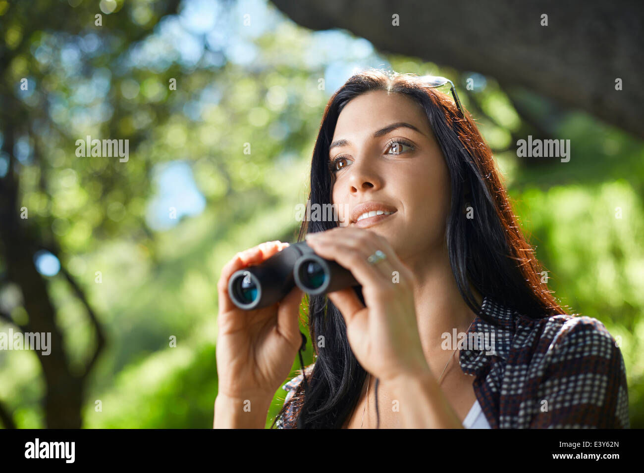 Mid adult woman with binoculars birdwatching in forest - Stock Image
