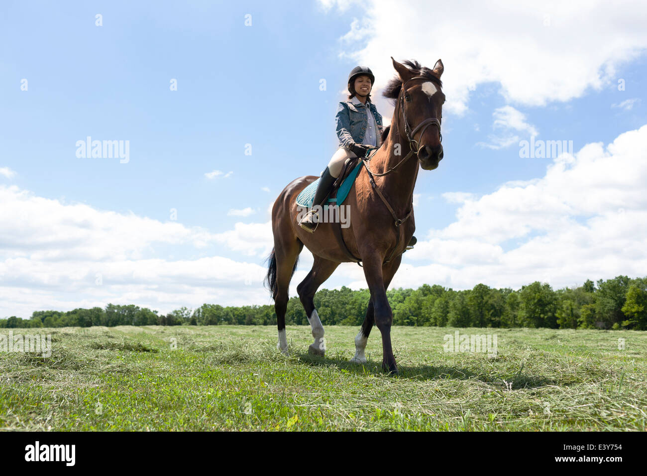 Horse rider on horse - Stock Image