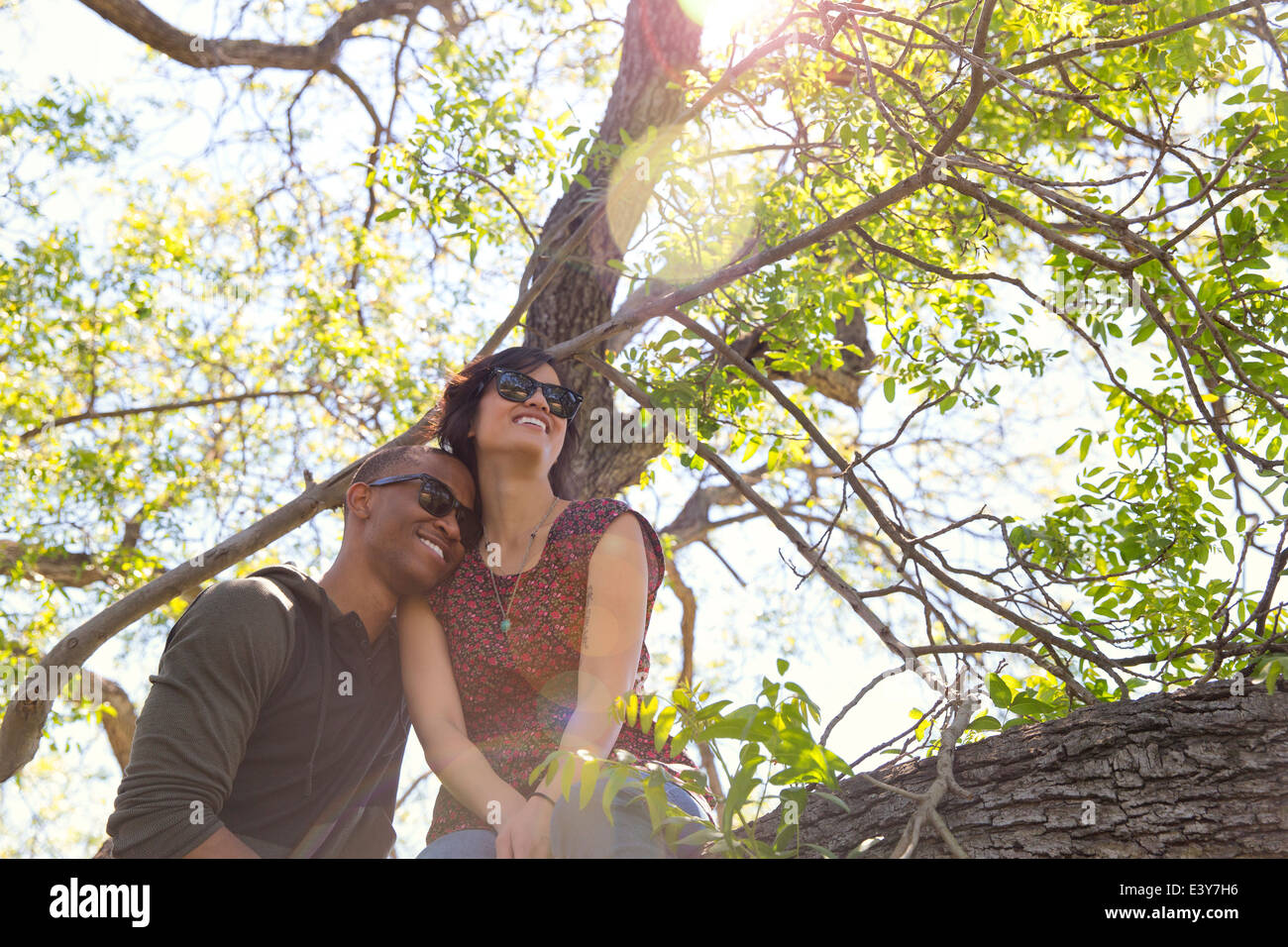 Romantic young couple gazing from tree - Stock Image
