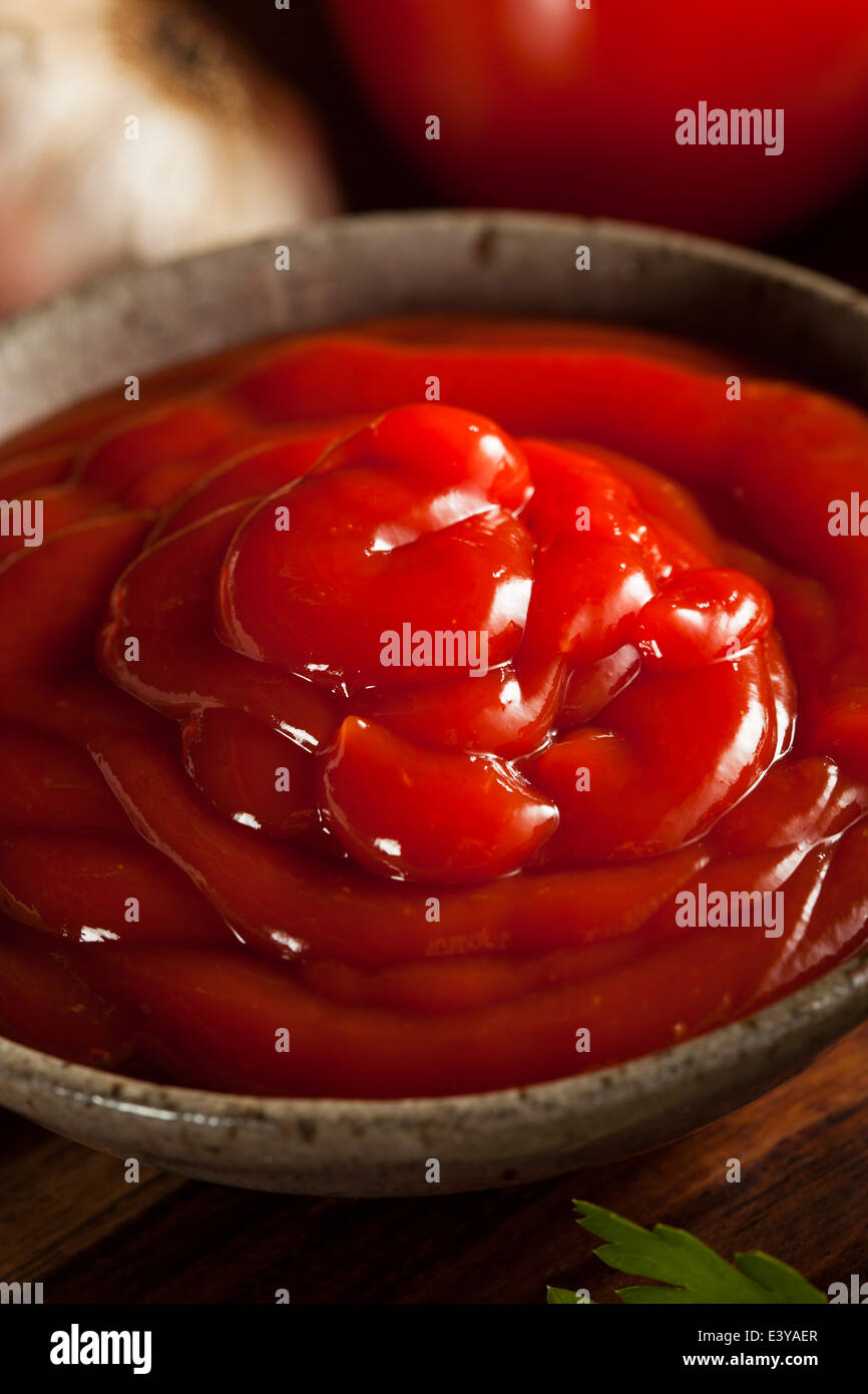Organic Red Tomato Ketchup in a Bowl - Stock Image