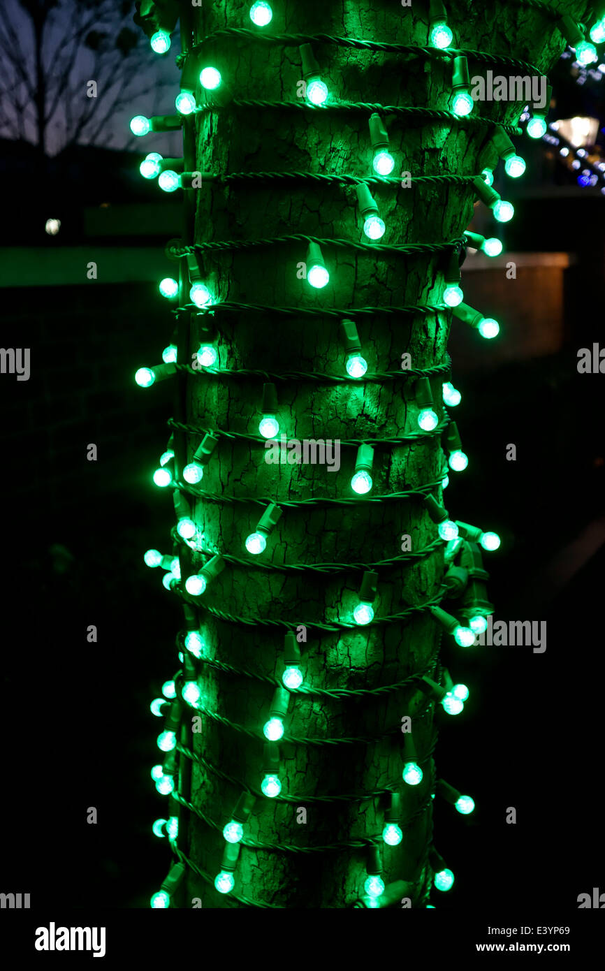 inc green pack glass christmas led novelty lights replacement bulbs light