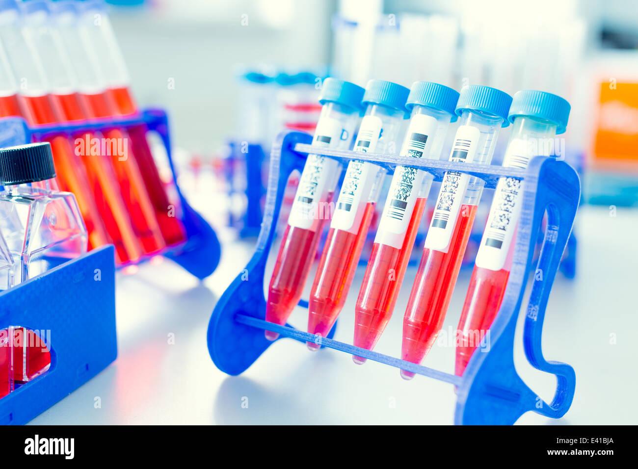 biotechnology plastic supplies - Stock Image