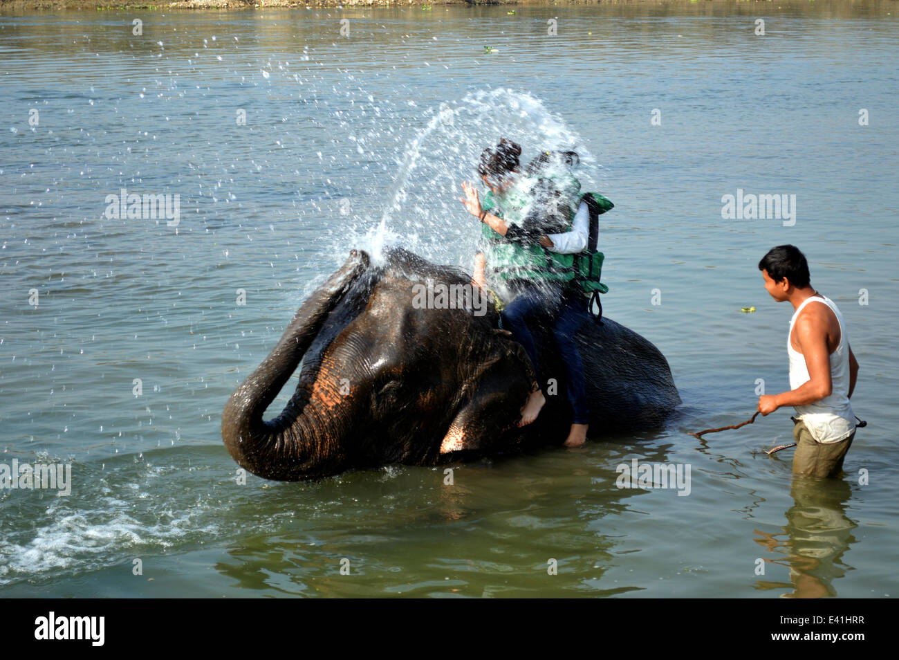 Elephant Shower That's a heffalump of a shower trunk! Two ladies enjoy the tusk of taking a pachyderm power shower Stock Photo