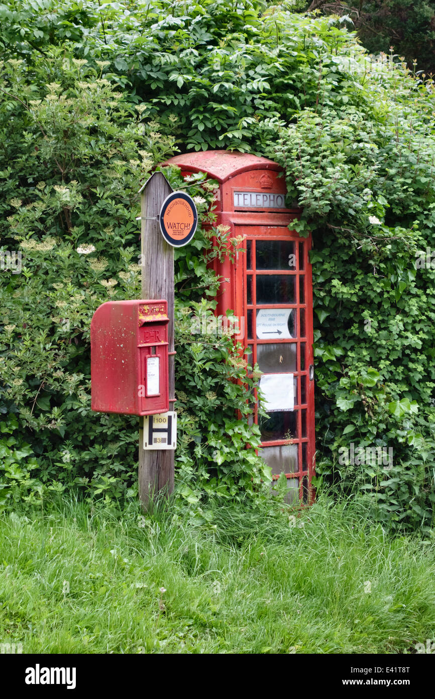 An old red telephone kiosk in Herefordshire, UK, almost lost in the overgrown hedge, with a Royal Mail postbox - Stock Image