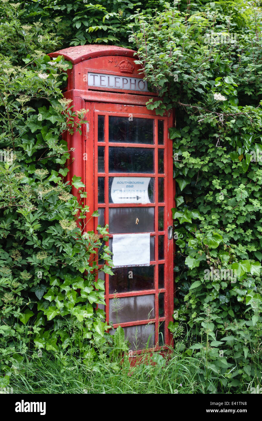An old telephone kiosk in Herefordshire, UK, almost lost in the overgrown hedge - Stock Image