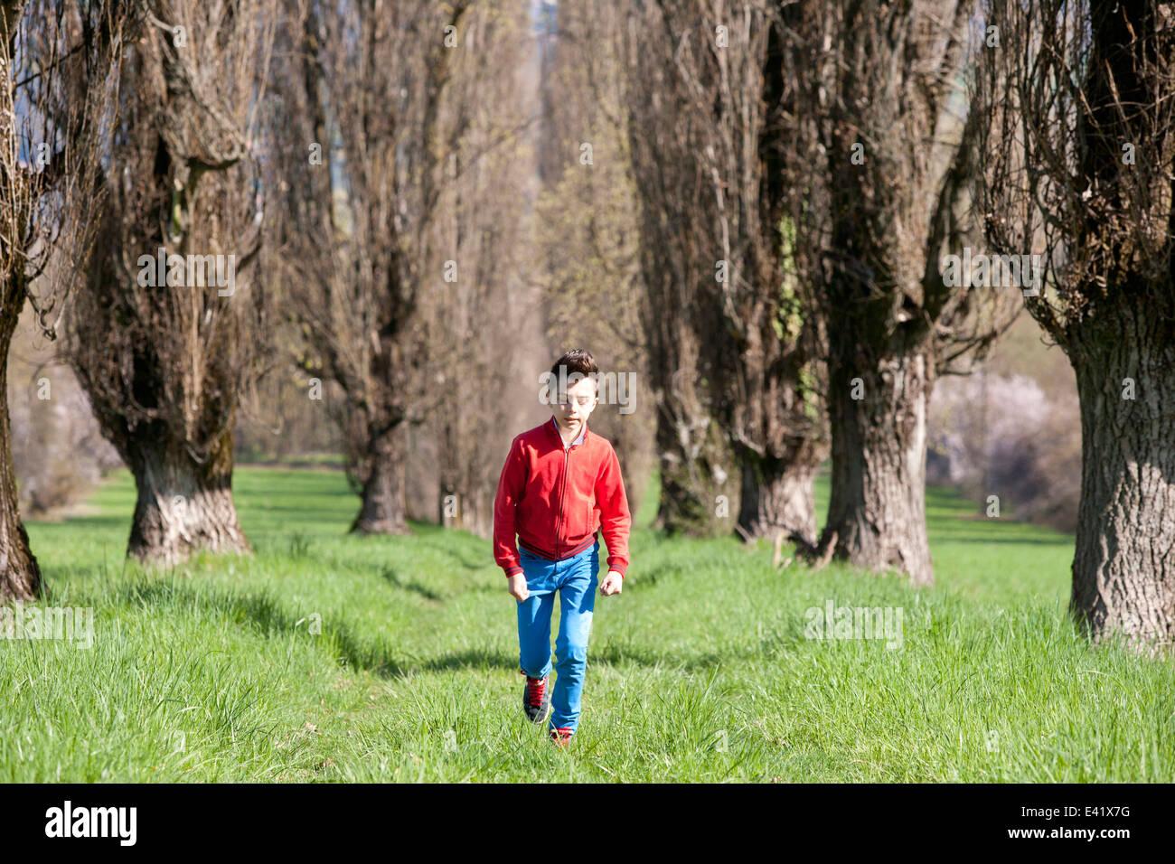 Twelve year old boy walking along tree lined field - Stock Image