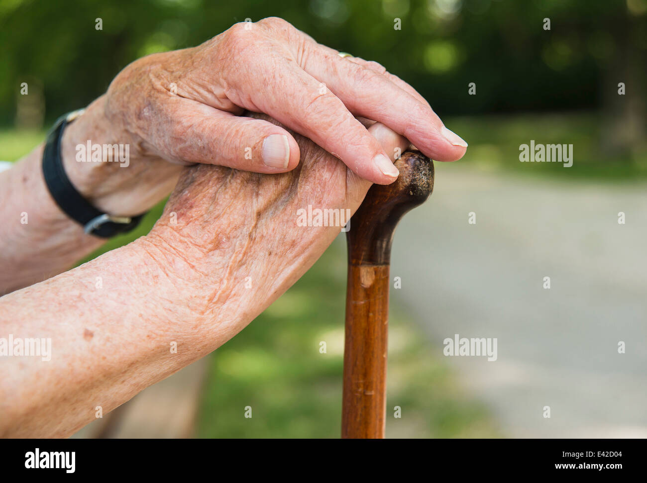 Senior woman's hands, holding walking stick - Stock Image