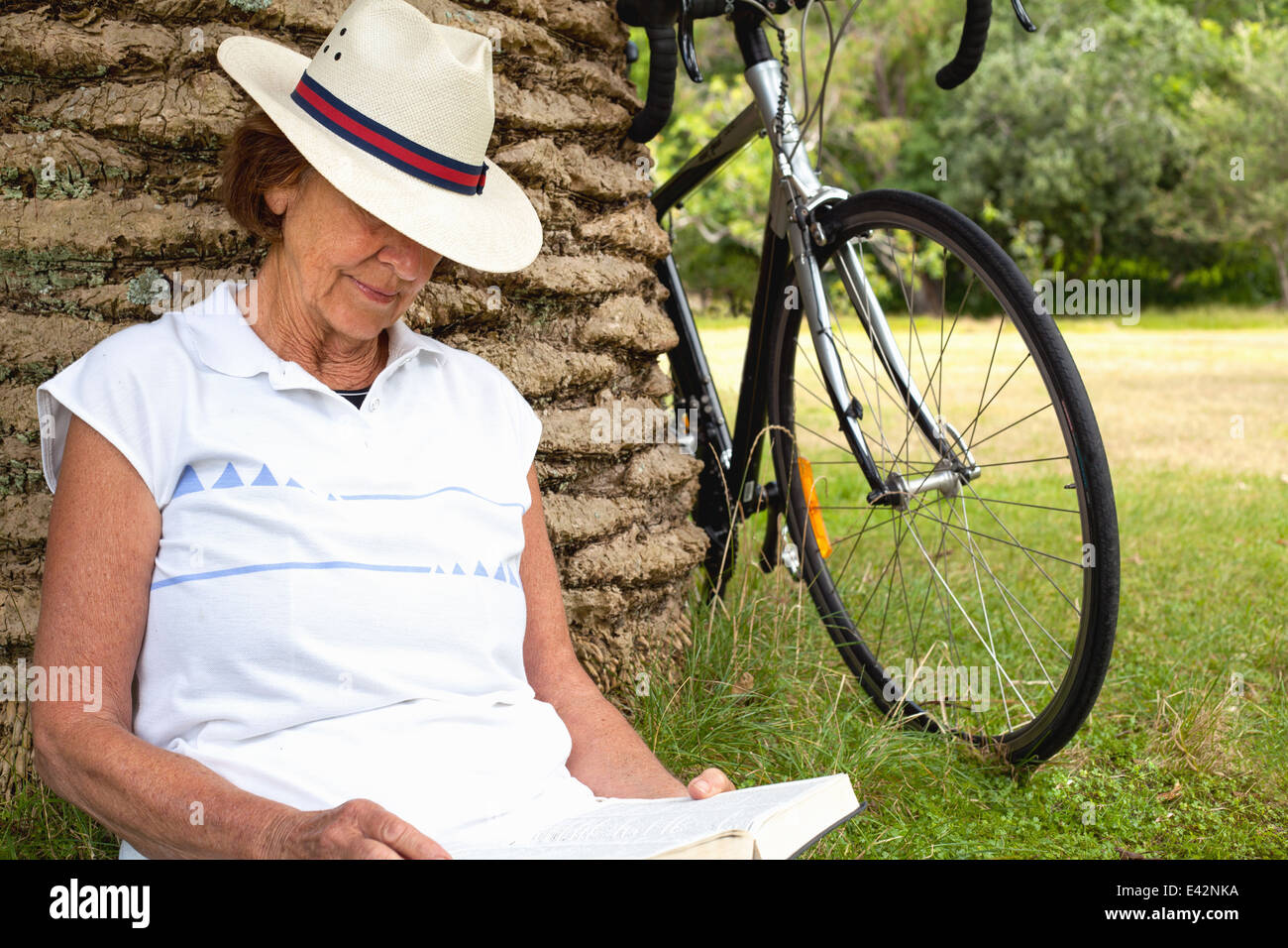 Senior woman leaning against palm tree reading in park - Stock Image