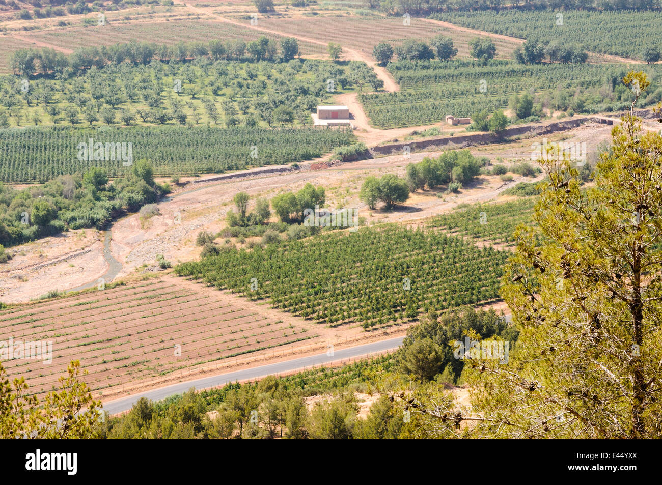 Agricultural land at the bottom of a valley in the Atlas Mountains, Morocco - Stock Image