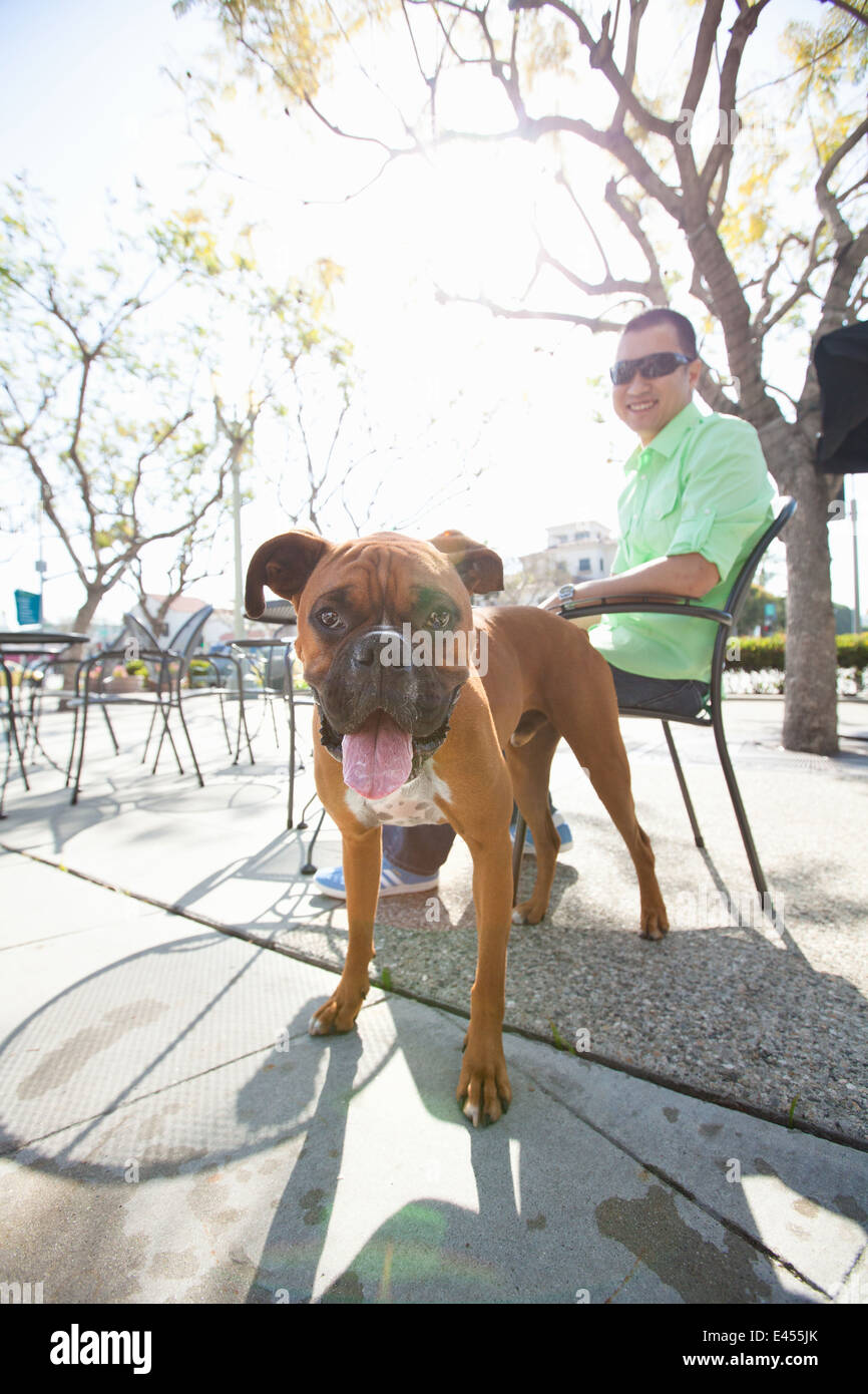 Mid adult man and his boxer dog in park cafe - Stock Image