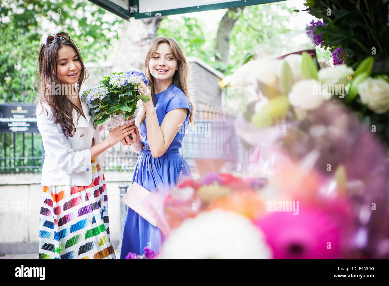 Two young women picking up potted plant - Stock Image