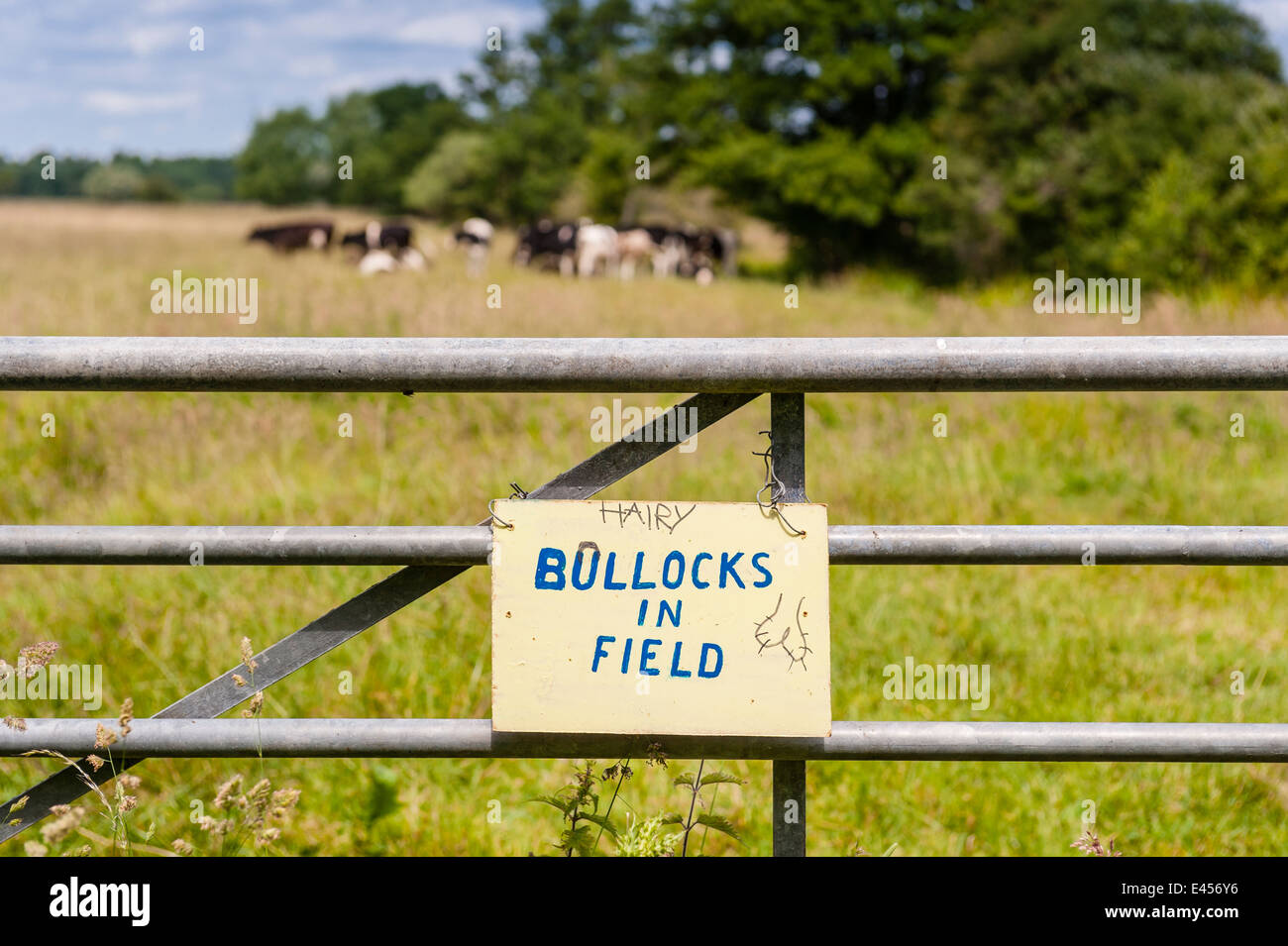A humorous sign in the Suffolk countryside,see description - Stock Image