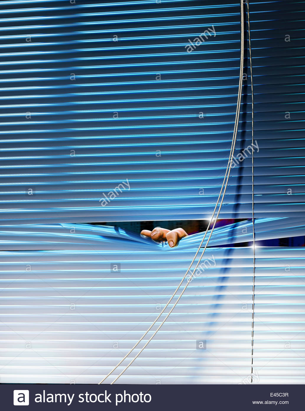 Fingers peeping out from venetian blinds - Stock Image