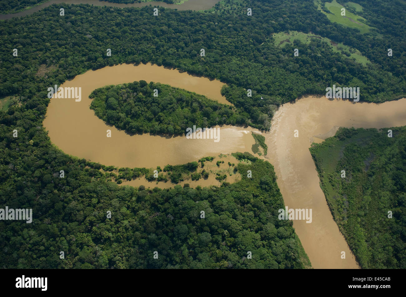 Aerial view of river meander and formation of ox-bow lake, in Amazon 'várzea' Rainforest during the - Stock Image