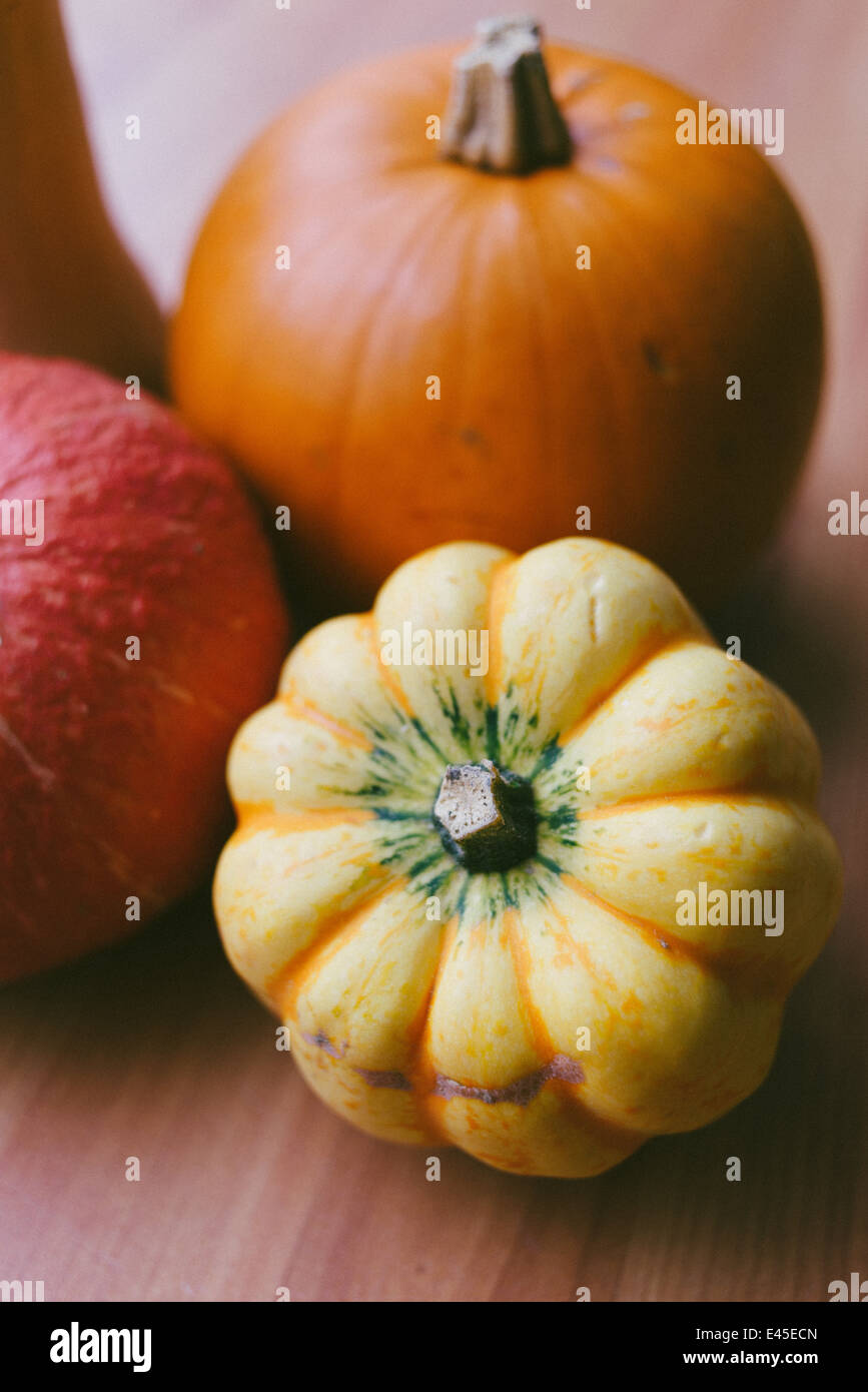 A variety of autumnal pumpkins & squashes ready for carving for Halloween into spooky designs and also for making - Stock Image