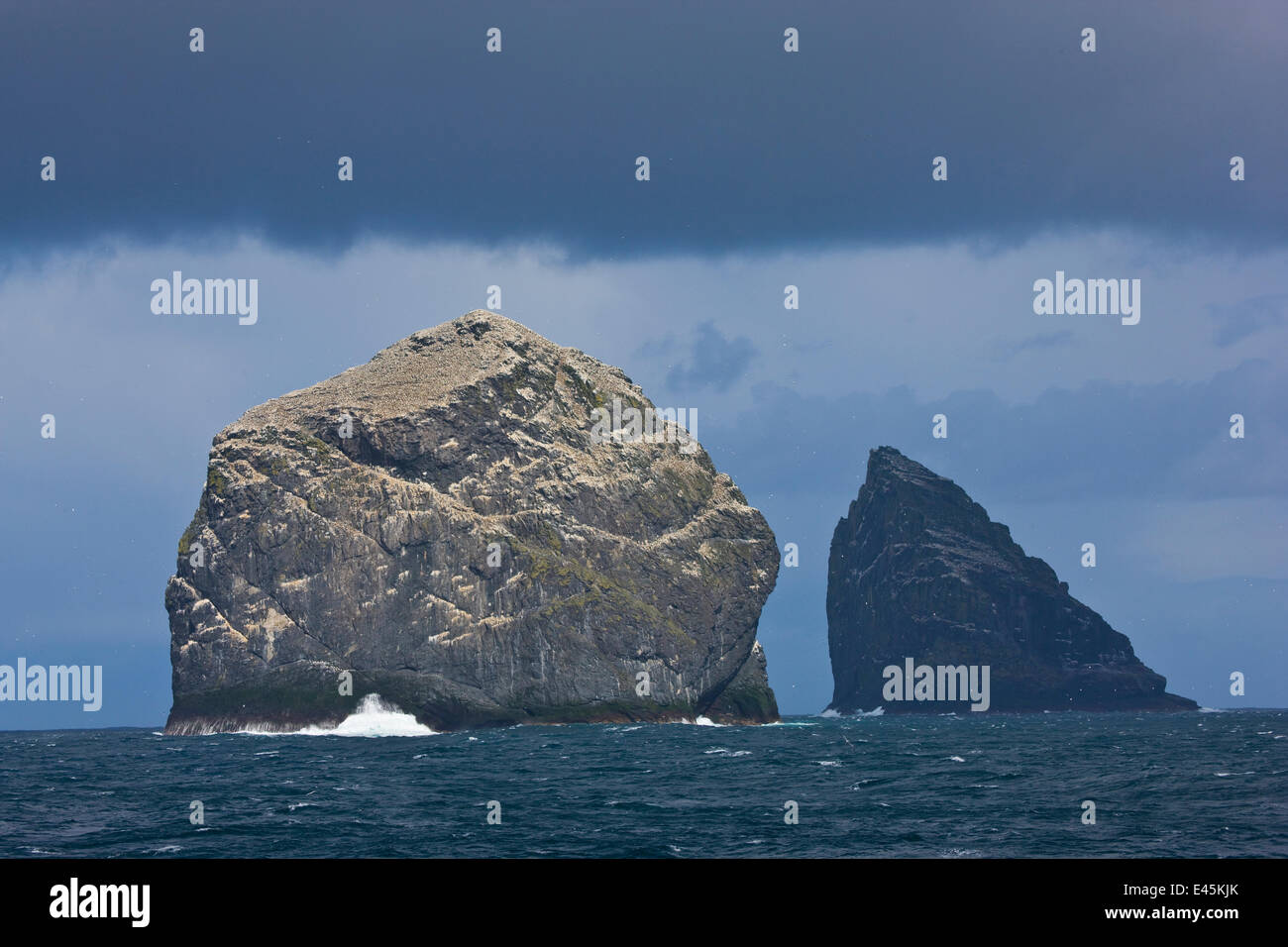 Stac Lee and Stac an Armin, home to Northern gannet (Morus bassanus) colonies, St. Kilda Archipielago, Outer Hebrides, - Stock Image