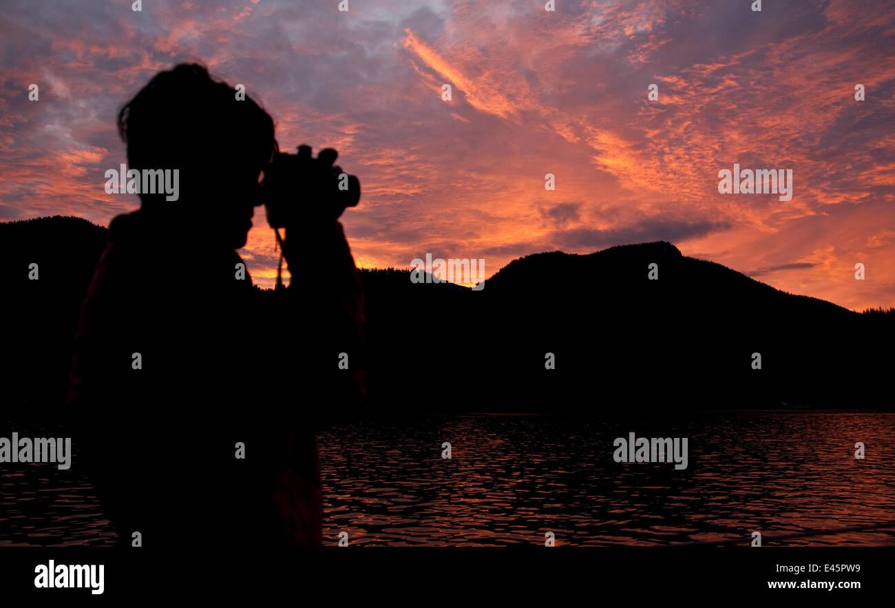 Silhouette of ecotourist using binonculars at sunrise, Great Bear Rainforest, British Columbia, Canada, September - Stock Image