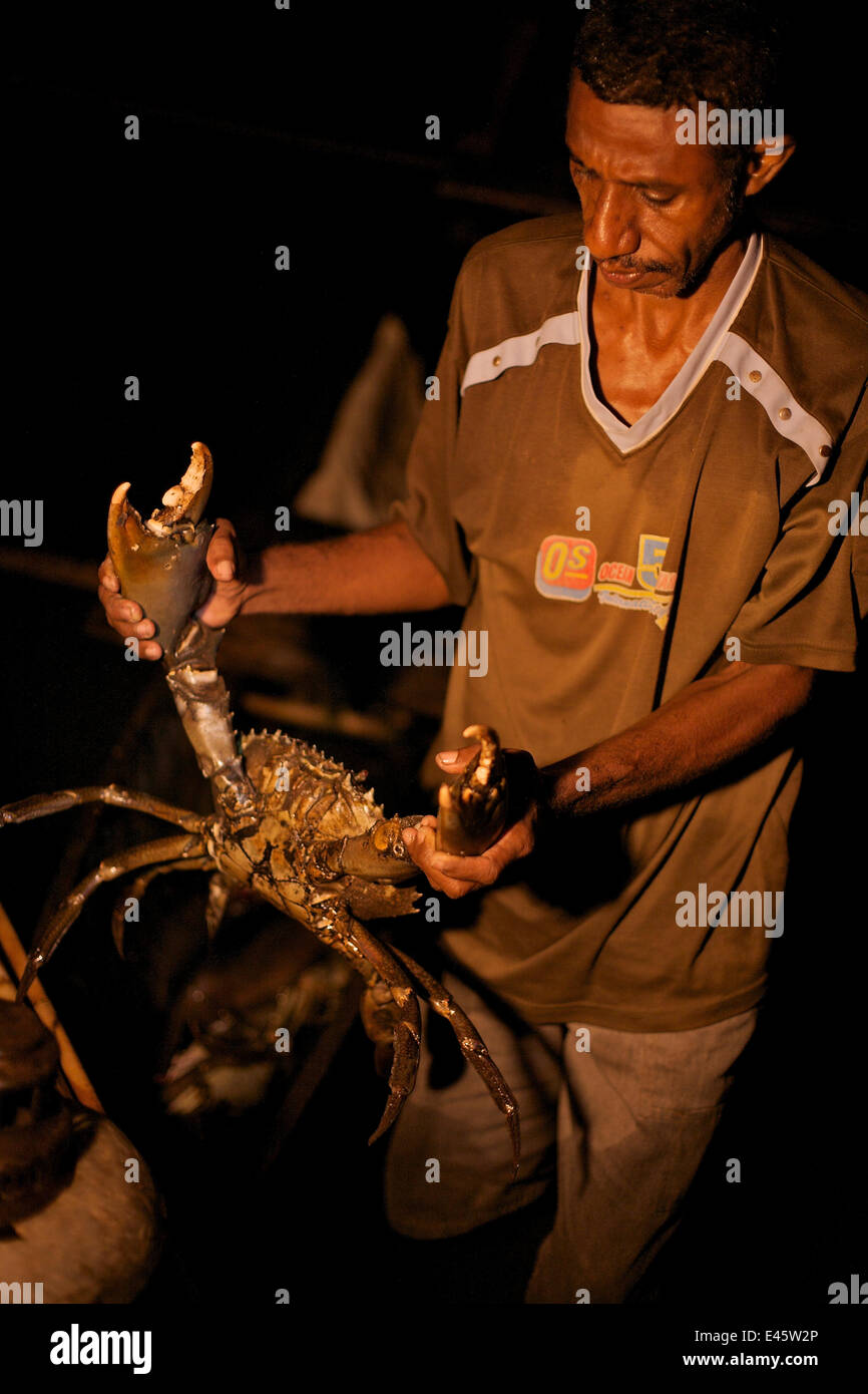 Silas, headman of Kabilo Village holding a Giant Mud Crab, caught whilst spearfishing at night from  canoes in Mayalibit - Stock Image
