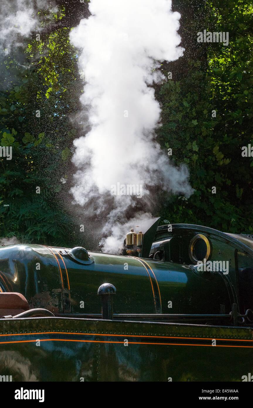 Steam train at Greenway Halt, Greenway Halt.letting of steam,letting of steam, - Stock Image