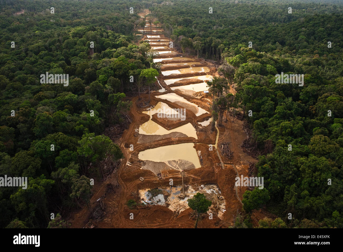 Aerial view of Alluvial Gold Mine in the rainforest, Guyana
