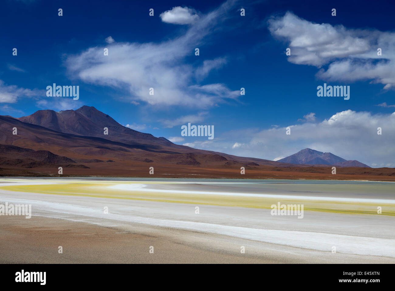 The remote region of high desert, altiplano and volcanoes near Tapaquilcha, Bolivia, December 2009 - Stock Image