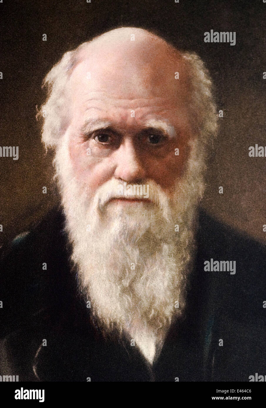 1881 portrait of Charles Robert Darwin (12 February 1809 - 19 April 1882)  English Naturalist and author of the Origin of Species. d7266093d02