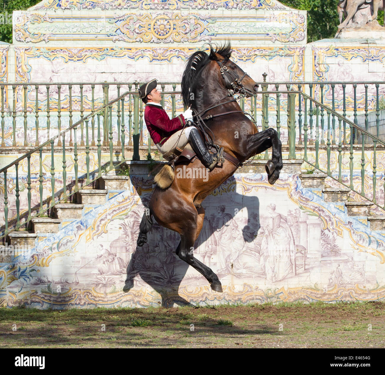 Lusitano horse, man training stallion in dressage steps, standing up on hind legs and then jumping in the air, Royal - Stock Image