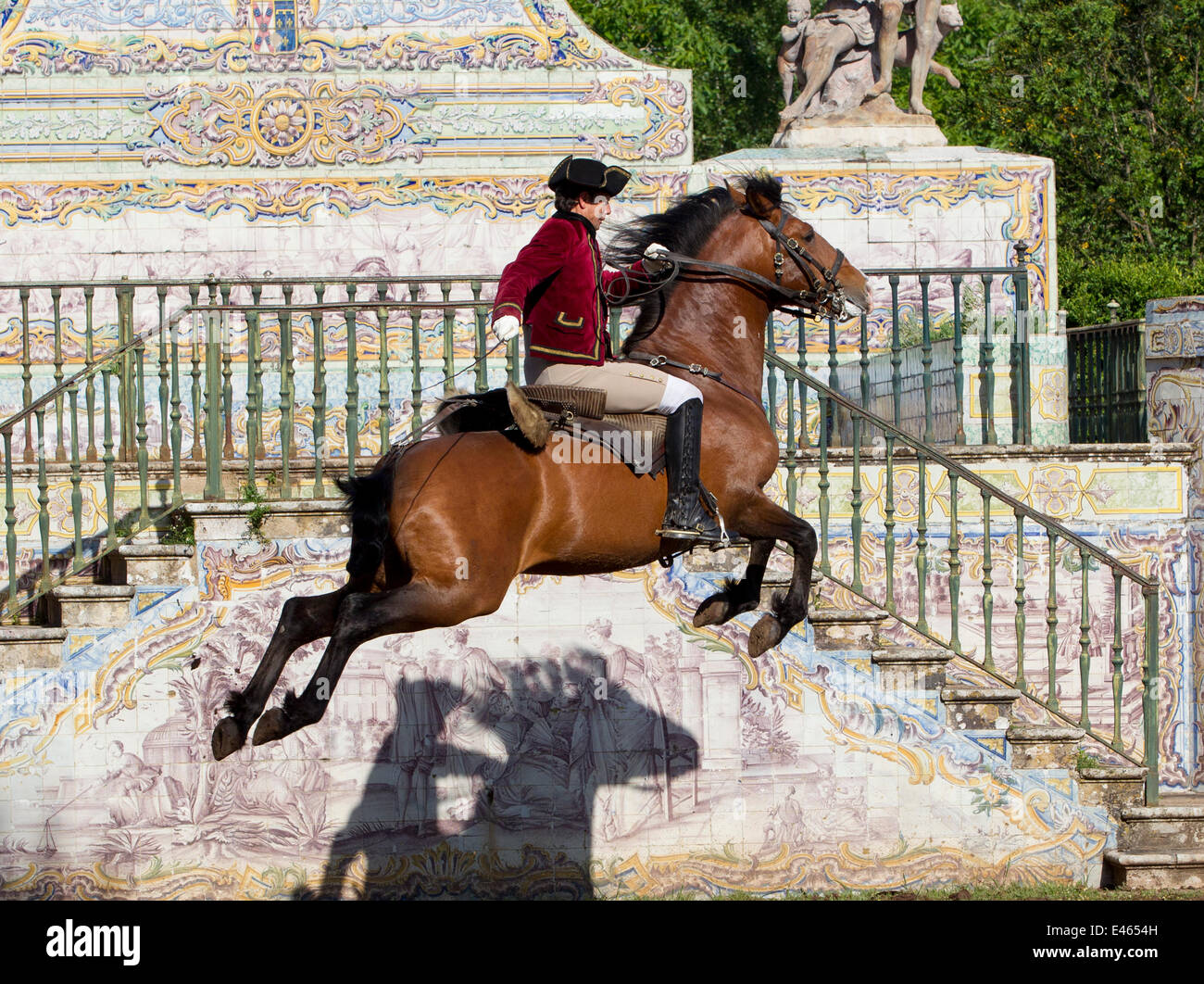 Lusitano horse, man training stallion in dressage steps, the high leap, Royal Riding School, Lisbon, Portugal, May - Stock Image